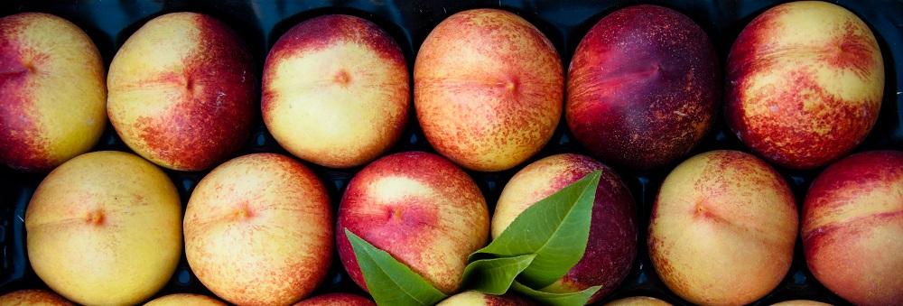 stockvault-peaches136105